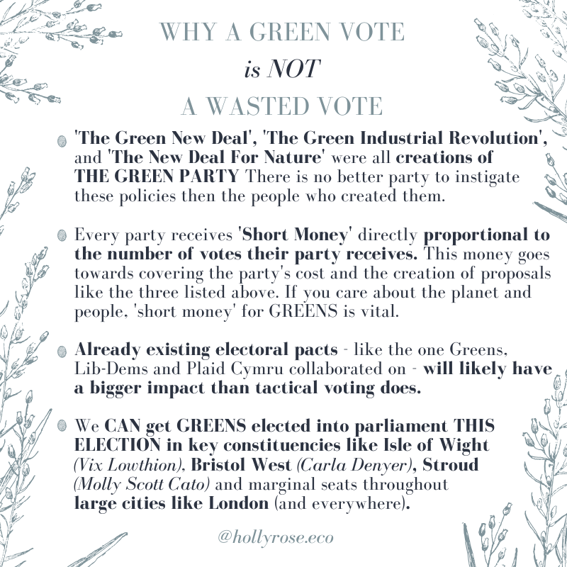 vote green, general election 2019, green or labour, the green party, tactical voting, who should I vote for to stop brexit, who should i vote for to get the tories out, how to tactical vote, how to vote for the green party, vote green 2019, short money, swap my vote, vote for policies, the green new deal, the green industrial revolution, ethical voting, regenerative vote, remain in europe
