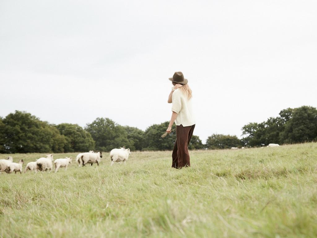 regenerative fashion, climate beneficial wool, fibershed, soil health, soil to soil, regenerative farming, ethical wool, regenerative wool, regenerative hemp